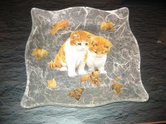 Assiette chatons