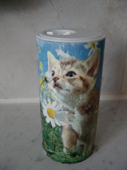 Salière chat